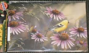 goldfinch and coneflower