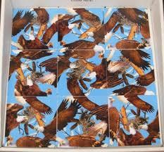 Scramble Square Bald Eagles